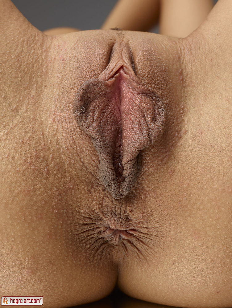 Naked vagina pictures in detail